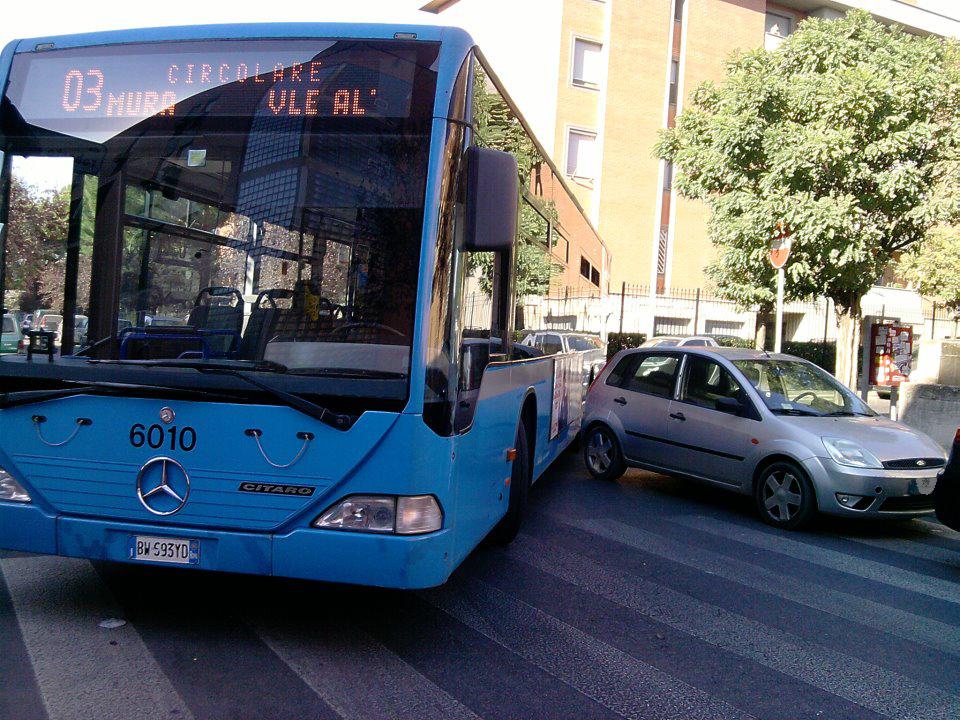autobus_acilia-2