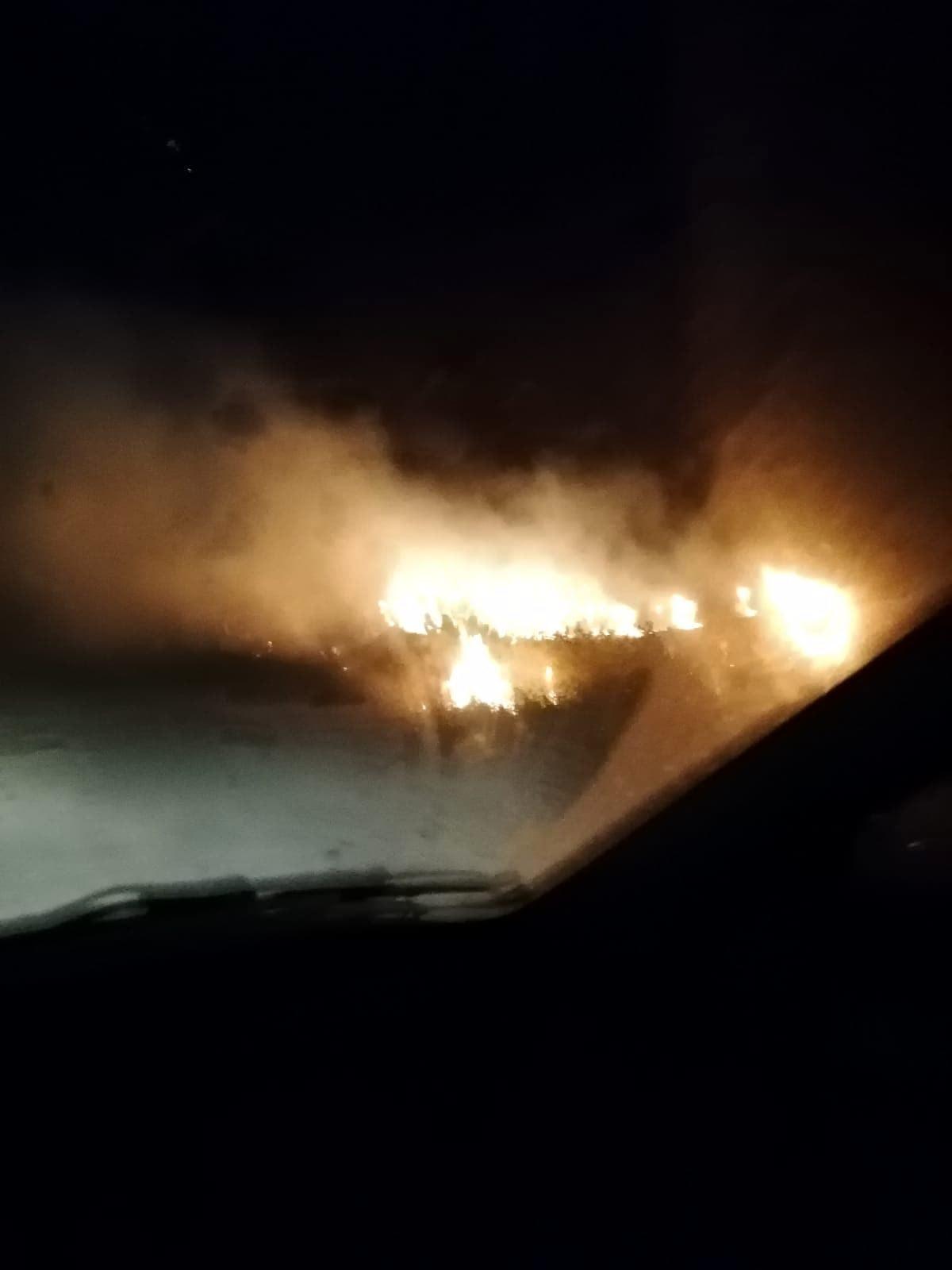 Incendio passo della Sentinella Fiumicino-2