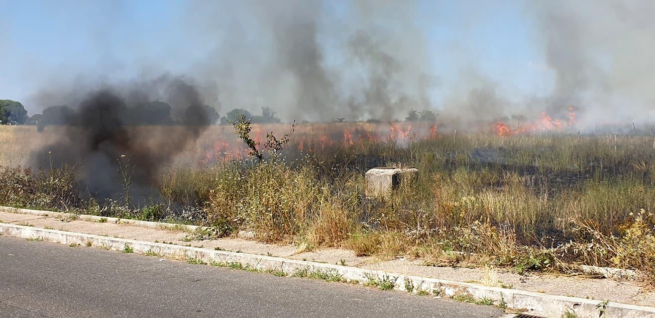 Incendio via Rina De Liguoro (foto Associazione Volontari del Parco delle Sabine  Porta di Roma)-2-2