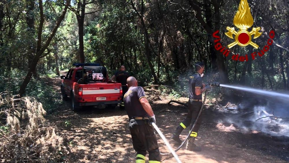 incendio pineta ostia-2