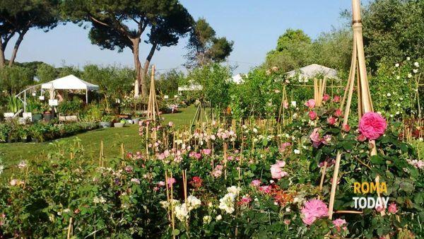 """Giardini della Landriana: dal 24 al 26 aprile torna """"Primavera alla Landriana"""""""