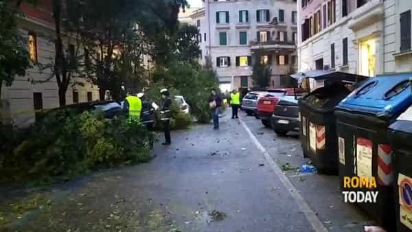VIDEO | Prati: cade ramo su auto in sosta. Il racconto dei testimoni
