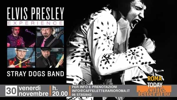 Stray Dogs Band Tributo a Elvis Presley