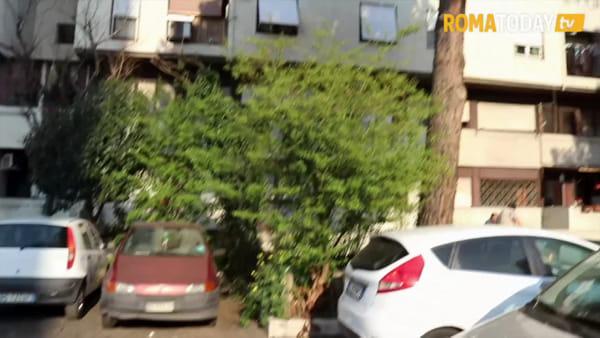 VIDEO | Tor Bella Monaca nella morsa dei vigili: controlli su bus e strada. Trovati luoghi di spaccio e consumo di droga