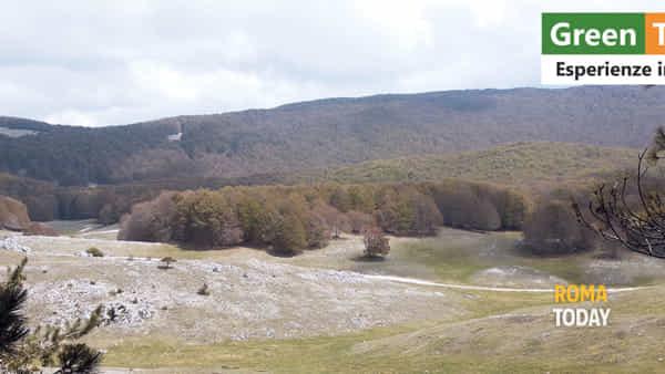 """Escursione """"Le Pianure del Silenzio"""" trekking da Campaegli a Camposecco"""