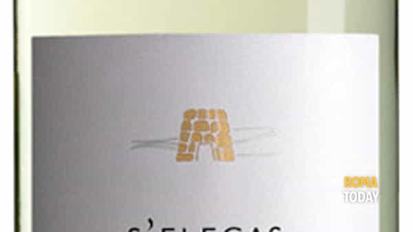 La Sardegna in un bicchiere: degustazione vini sardi