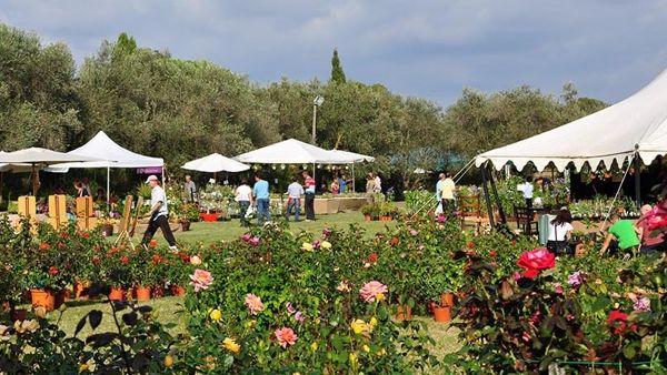 Primavera alla Landriana:il flower show dedicato alla bella stagione