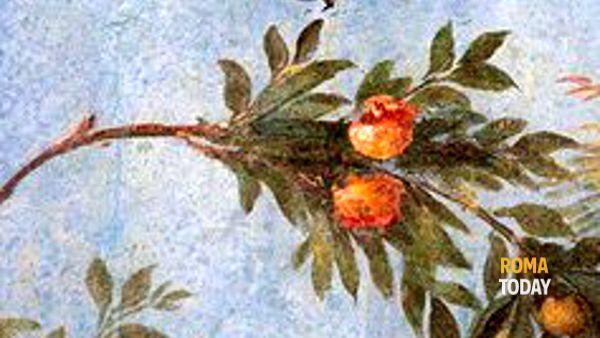Visita Guidata, La Villa di Livia a Prima Porta 31 maggio