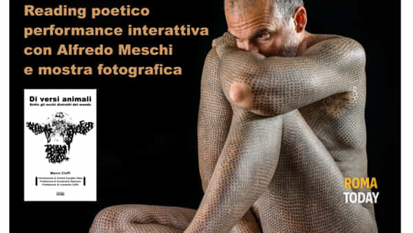 """""""Di versi animali"""" di Marco Cioffi e mostra Misoteria"""