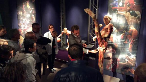 Real Bodies: la mostra scopri il corpo umano