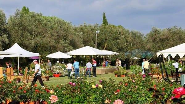 Primavera alla Landriana: mostra mercato del giardinaggio di qualità