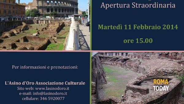 La palestra dei gladiatori: il Ludus Magnus visita guidata 11 febbraio 2014
