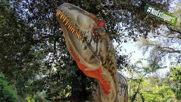 """""""Dinosauri in carne e ossa"""" nell'Oasi WWF di Fregene"""