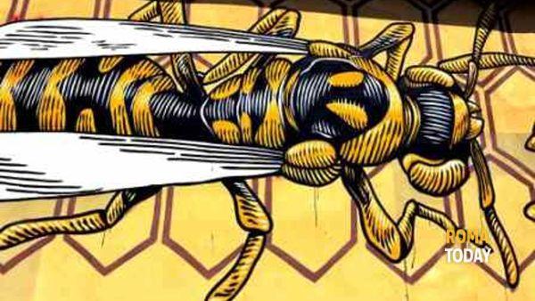 Mu.Ro: urban art al Quadraro