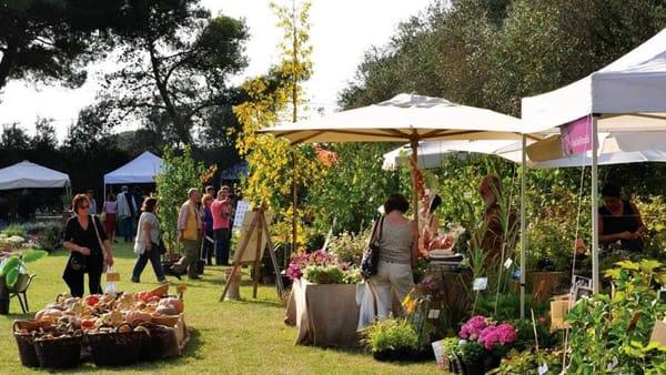 Primavera alla Landriana: flower show e giardinaggio di qualità