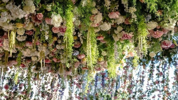 Floripark opening, 10mila metri quadri di sogni all'aperto