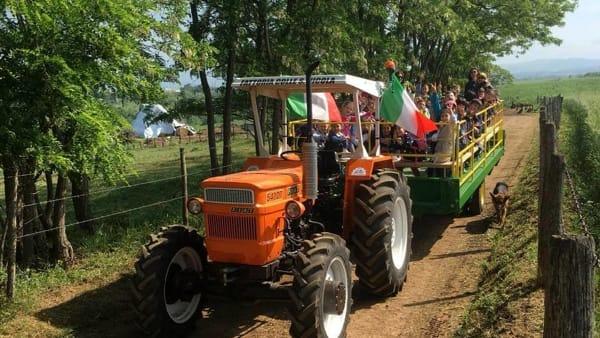 Pranzo contadino, porte aperte in fattoria