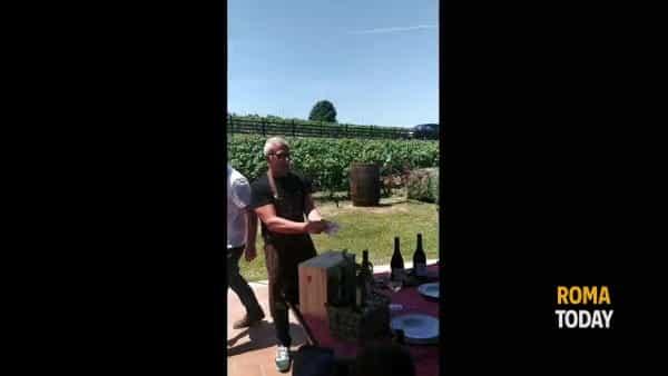 VIDEO | Panzanella di pomodori e baccalà: la ricetta di Max Mariola