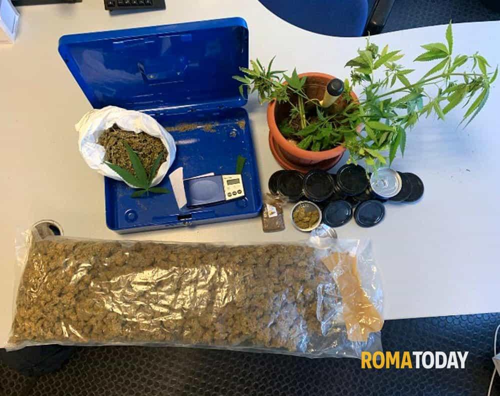 Marijuana in scatola Centocelle 6-2